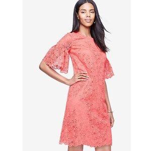 Ann Taylor Coral Lace Shift Dress